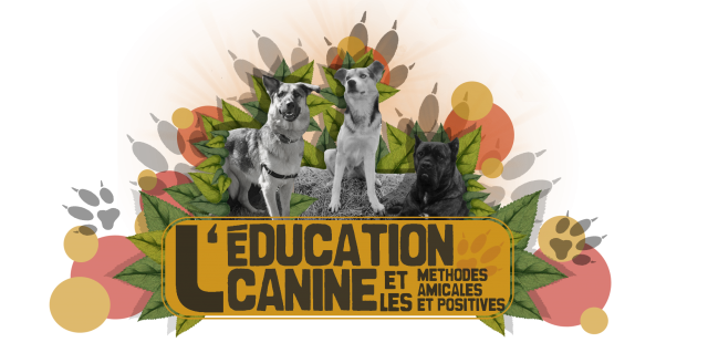 °°Le Forum de l'Education Canine & des Méthodes Positives & Amicales°°