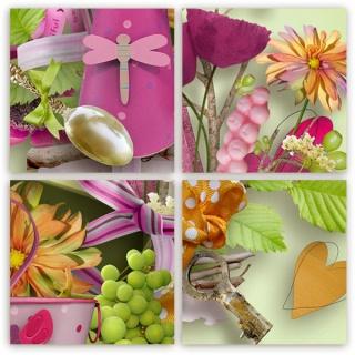 http://i68.servimg.com/u/f68/10/08/04/17/previ163.jpg