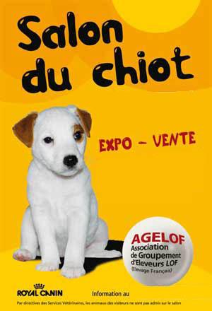 Salon du chiot avignon 84 les 10 et 11 avril 2010 - Salon du chiot brest ...