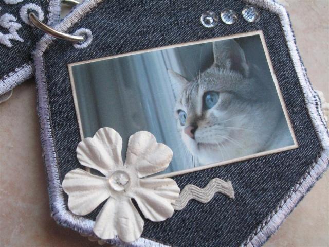http://i68.servimg.com/u/f68/11/68/62/93/img_3925.jpg