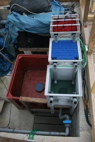 Besoins d 39 aide pour une filtration forum bassin for Filtre bassin maison