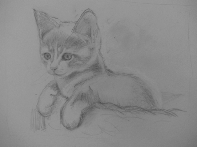 chaton dans son panier - Dessin De Chaton Trop Mignon 2