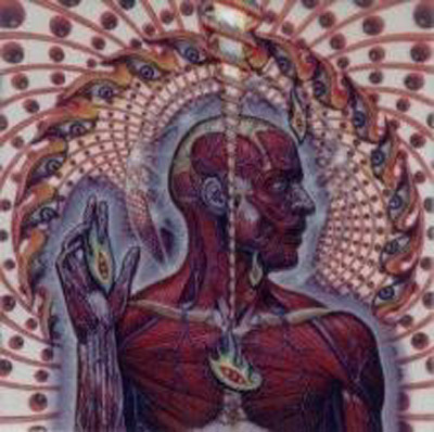 Tool   discographie mp3 preview 3