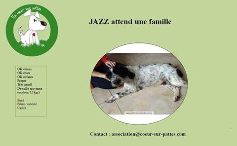 jazz10.jpg