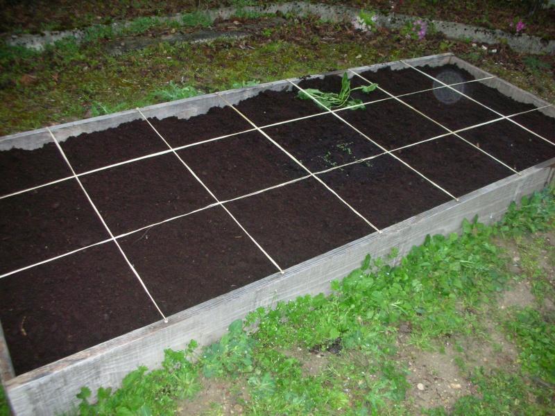 Le potager 2011 d 39 obsoolete page 2 au jardin forum de jardinage - Faire un potager debutant ...
