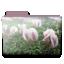 http://i68.servimg.com/u/f68/11/98/67/47/flower11.png