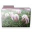https://i68.servimg.com/u/f68/11/98/67/47/flower11.png