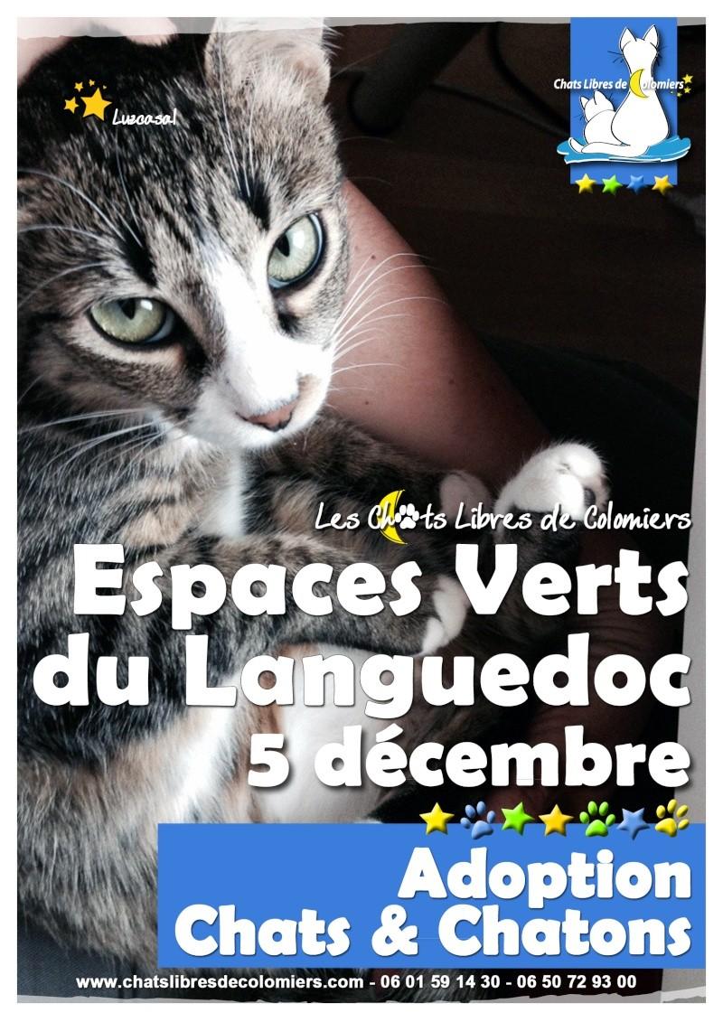 Journ e adoption aux espaces verts du languedoc le samedi for Espaces verts du languedoc