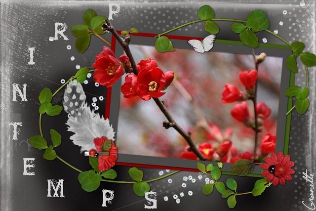 http://i68.servimg.com/u/f68/12/28/25/77/printe12.jpg