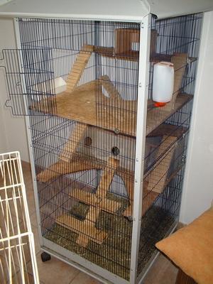 Fabrication Cage Petit Rongeur N 3 Et Accessoires