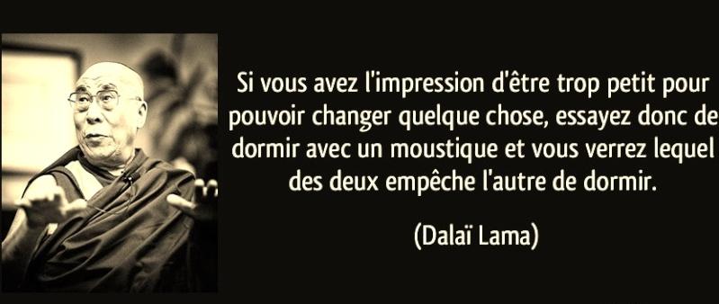 dalai-10.jpg