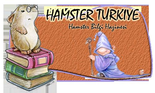 HamsterTurkiye