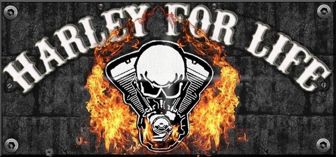 Harleyforlife
