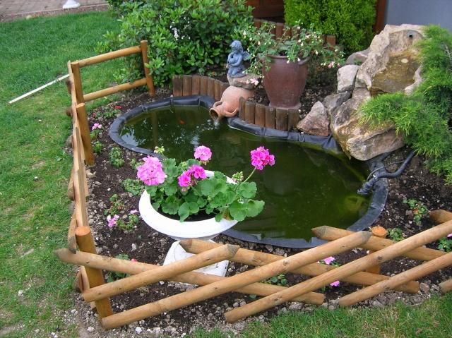 Mini bassin besoin d 39 aide for Mini pompe bassin