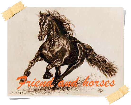 friends and horses