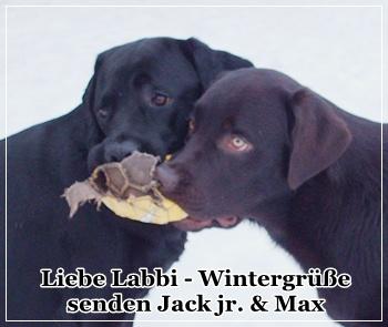 An den Beitrag angehängtes Bild: http://i68.servimg.com/u/f68/14/38/61/73/winter10.jpg
