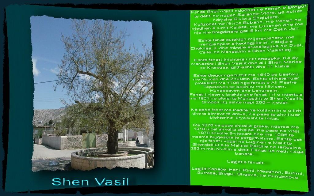 Shen Vasil