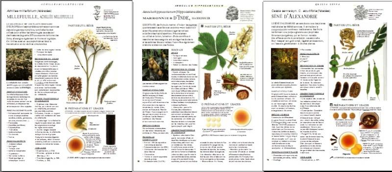 encyclopedie larousse des plantes