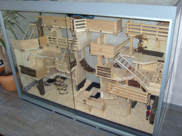 cage naturel pour souris. Black Bedroom Furniture Sets. Home Design Ideas