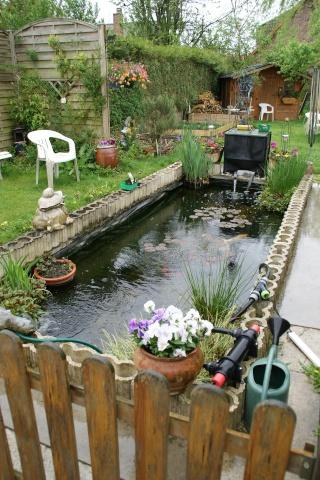 Bassin 1000 litres trouvez le meilleur prix sur voir for Bassin prix