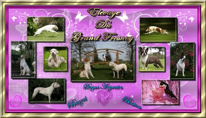Le Grand Fresnoy