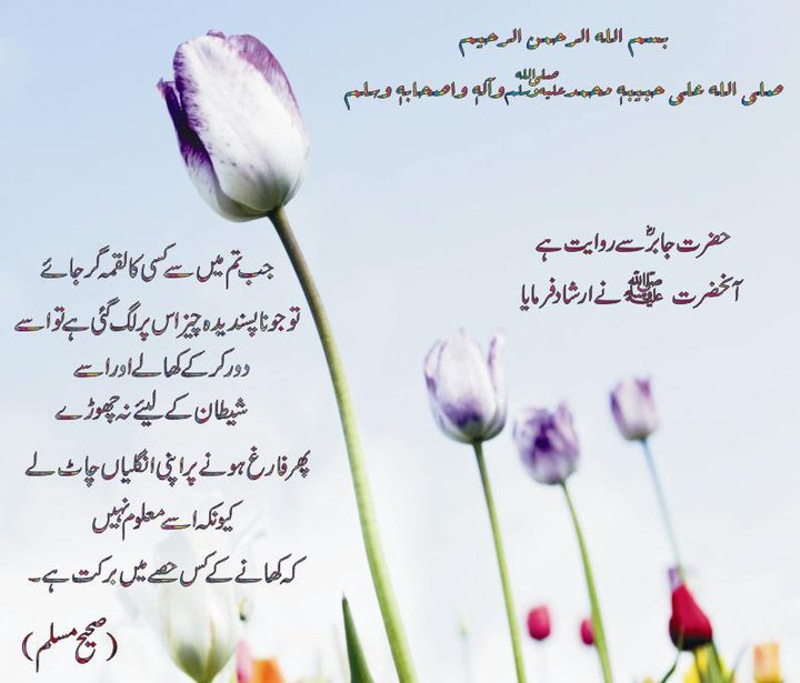 64485 10 - Hadees of the day 5th june