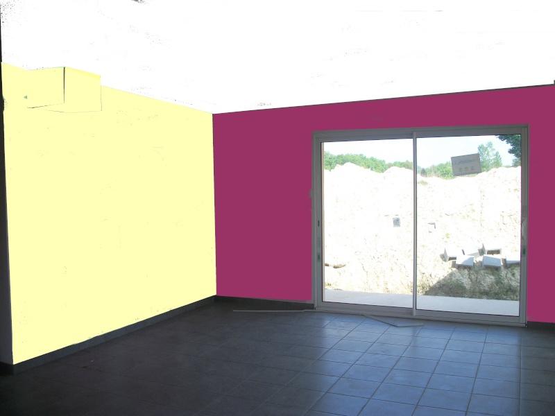 Couleurs pour s jour cuisine ouverte maison neuve for Peinture salle a manger moderne