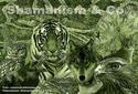 Animali Totem e Spiriti Guida - Totem Animals and Allies Spirits