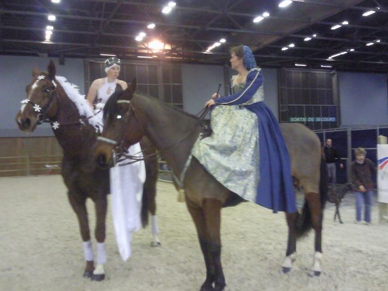Le salon du cheval 2010 - Salon du cheval a mons ...