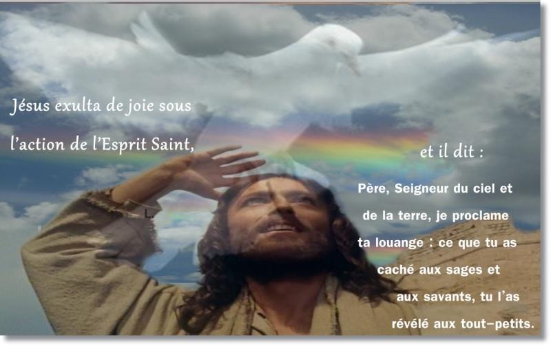 Jésus exulta de joie sous l'action de l'Esprit Saint »