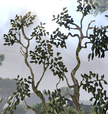 olivie11.jpg