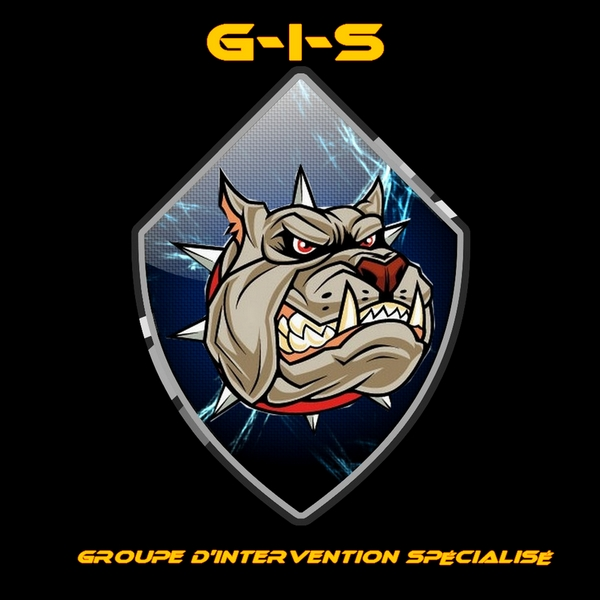 Groupe d'intervention special