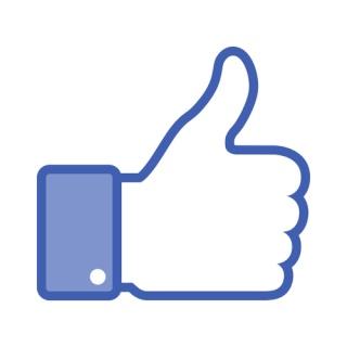 facebo11.jpg