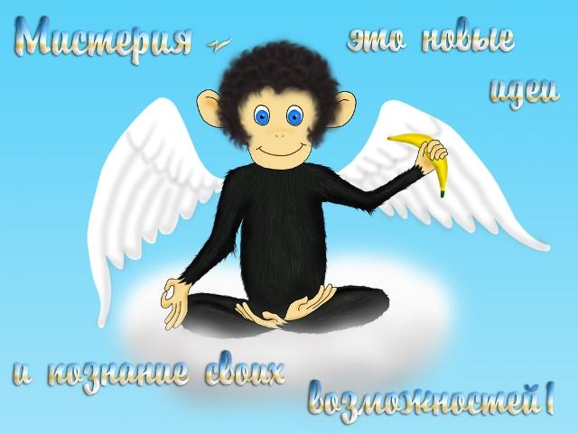 http://i68.servimg.com/u/f68/17/26/24/34/67851210.jpg