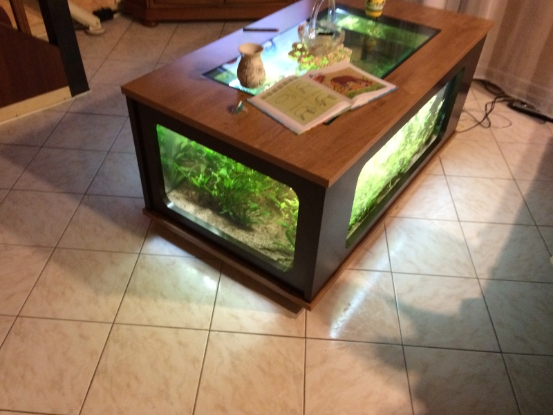 table basse avec aquarium. Black Bedroom Furniture Sets. Home Design Ideas