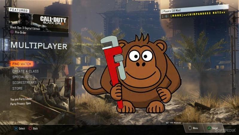 monkey10.jpg