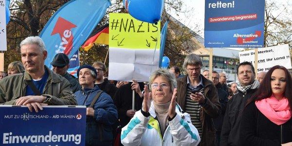 L'Allemagne a décidément des trolls antifascistes de compétition (manifestation de l'AFD à Berlin le 1er novembre 2015).
