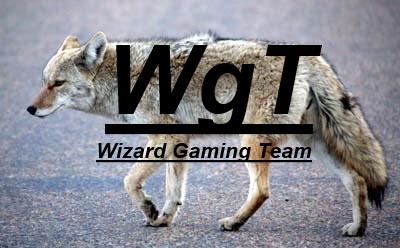Wizard Gaming Team