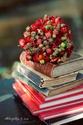 Jeux divers : Chasse aux livres ! Chasse aux mots !