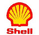 https://i68.servimg.com/u/f68/19/08/59/05/shell-10.jpg
