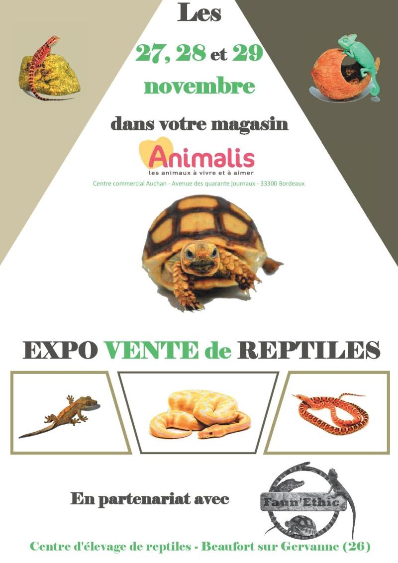 Du 27 au 29 novembre 2015 expo vente des reptiles - Animalerie bordeaux lac ...