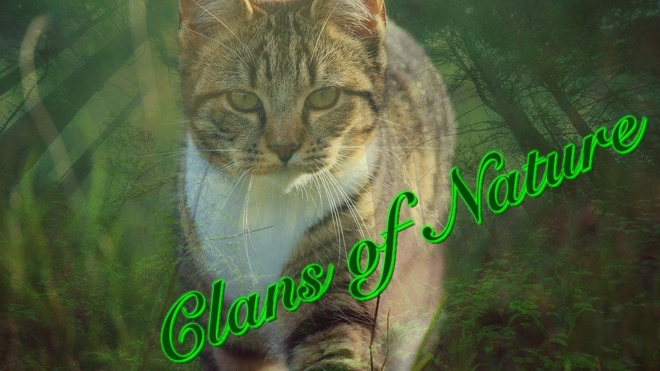 Clans of Nature