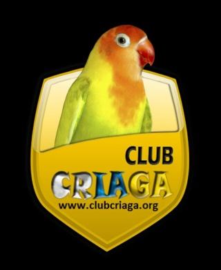 CLUB DE CRIADORES DE AGAPORNIS CRIAGA