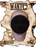 http://i68.servimg.com/u/f68/19/36/30/89/wanted14.png