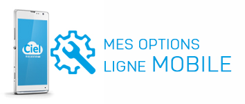 Ligne mobile : les options