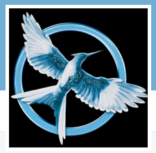 Mockingjay Power