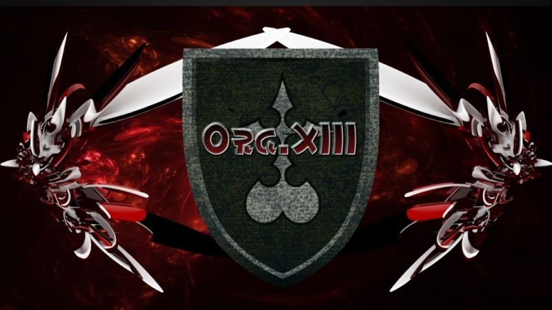 L'organisation XIII