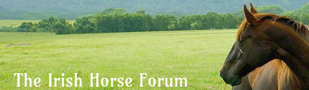 Horse Forum Ireland