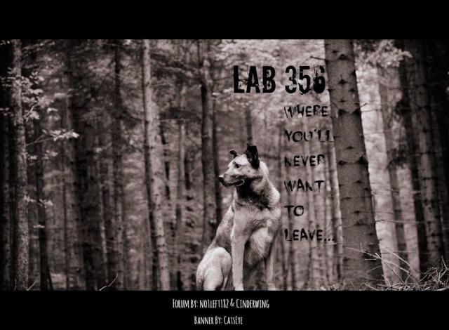 Lab 356